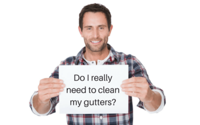 Why Clean Your Gutters? – Q&A With Aadams Tree and Landscaping