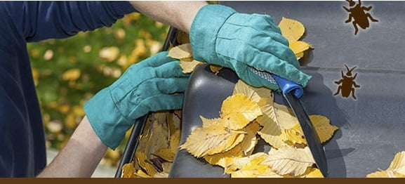 Clogged gutters can lead to many problems.